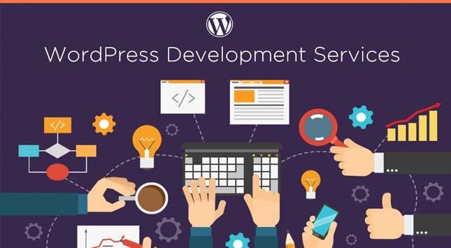 Accept Payments WordPress Website