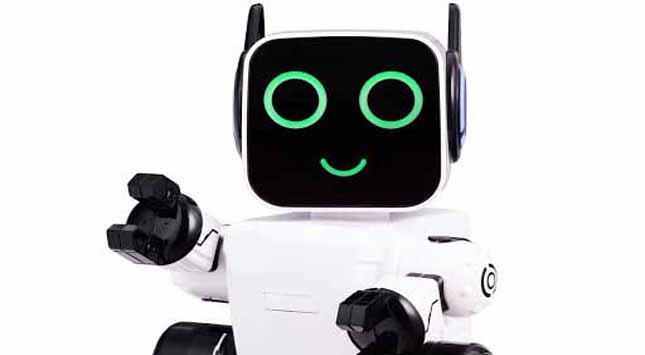 Raspberry Pi Robots