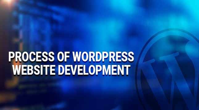 WordPress Theme or Custom Development