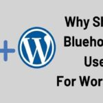 Why Should Bluehost Be Used For WordPress