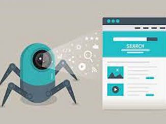 Website Indexing and Crawling